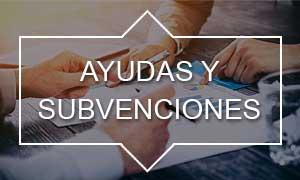 ayudas-subvenciones-adine
